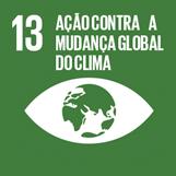 ODS 13 - Ação contra a mudança global do clima