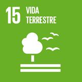 ODS 15 - Vida terrestre